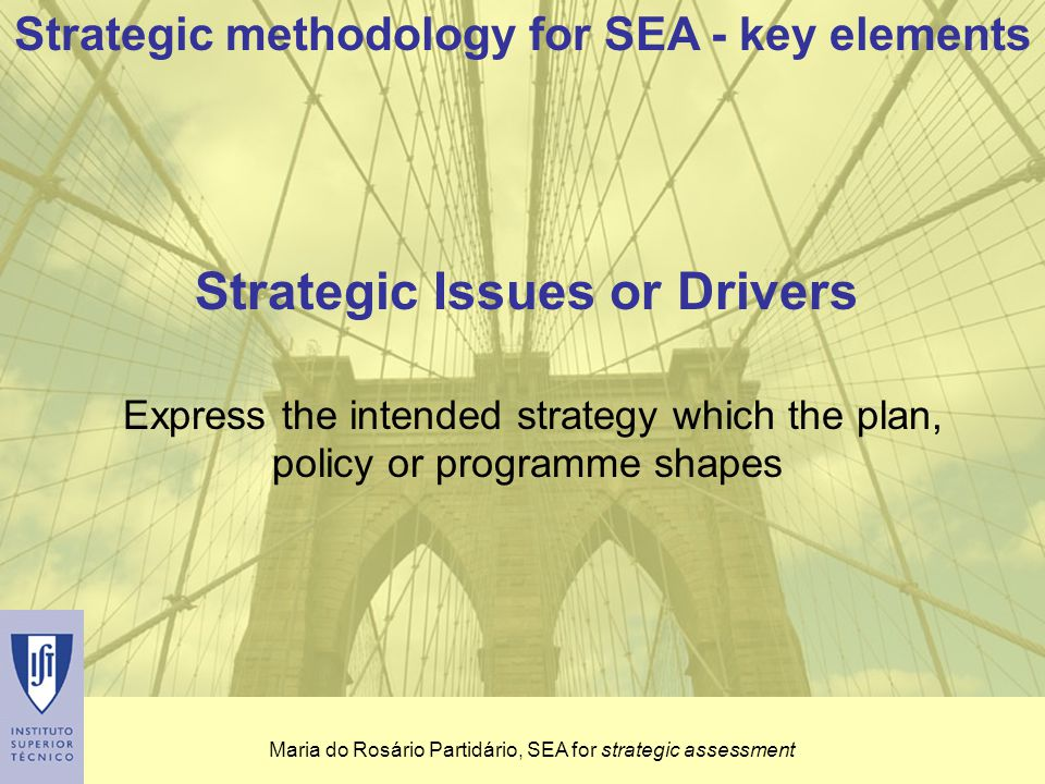 Maria do Rosário Partidário, SEA for strategic assessment Critical factors (CF) for decision-making Integrated factors - result from the integration of the strategic reference framework (SRF), the environmental factors and the strategic issues of the initiative Establish the decision analysis framework Ensure strategic focus (3 < X < 8) Assessment factors that can take a positive (opportunity) or negative (risk) direction Strategic methodology for SEA - key elements