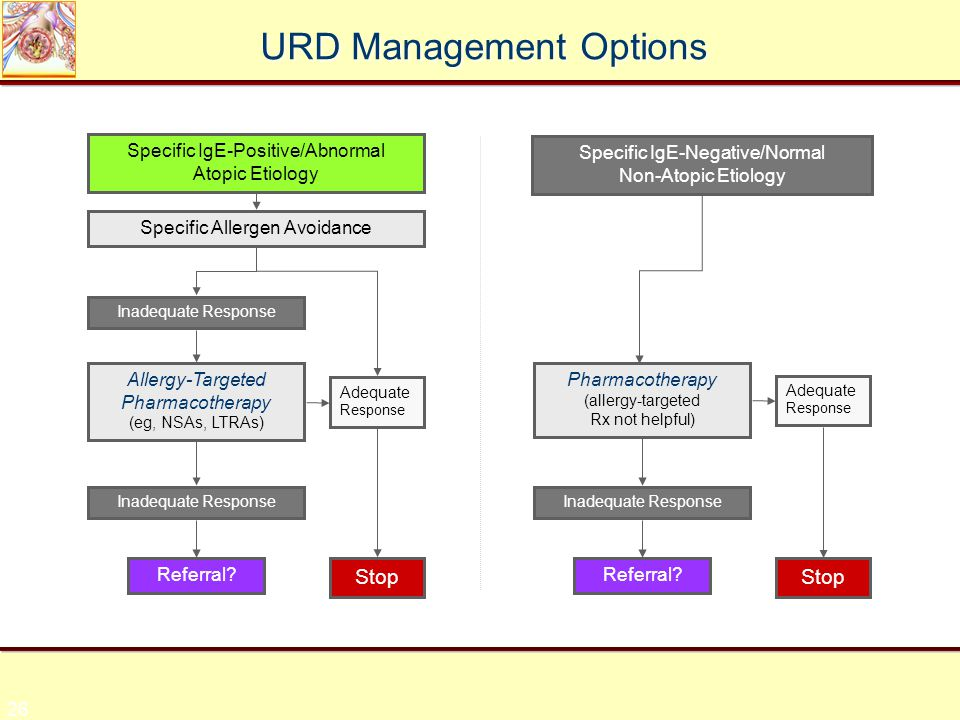 26 URD Management Options Specific IgE-Positive/Abnormal Atopic Etiology Specific Allergen Avoidance Adequate Response Allergy-Targeted Pharmacotherapy (eg, NSAs, LTRAs) Stop Inadequate Response Referral.