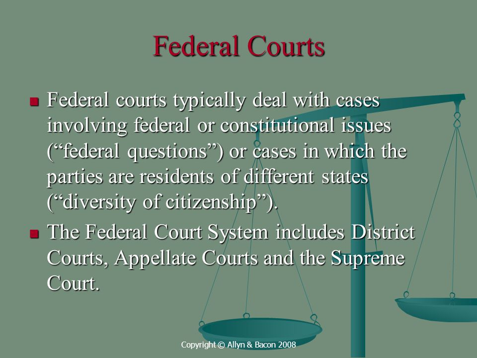 Copyright © Allyn & Bacon 2008 Federal Courts Federal courts typically deal with cases involving federal or constitutional issues ( federal questions ) or cases in which the parties are residents of different states ( diversity of citizenship ).