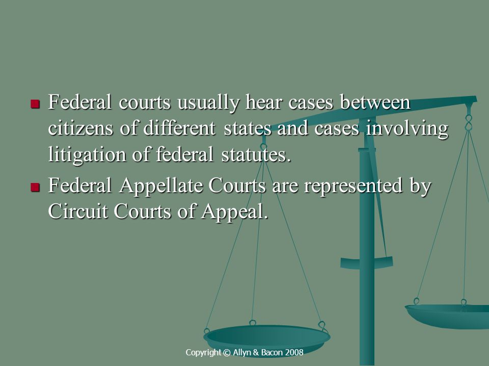 Copyright © Allyn & Bacon 2008 Federal courts usually hear cases between citizens of different states and cases involving litigation of federal statutes.
