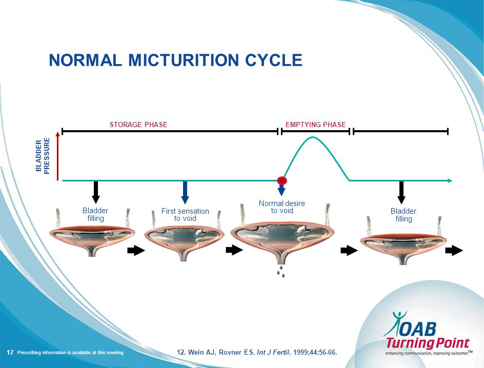 Prescribing information is available at this meeting NORMAL MICTURITION CYCLE Bladder filling First sensation to void Normal desire to void Bladder filling STORAGE PHASEEMPTYING PHASE BLADDER PRESSURE 17 12.