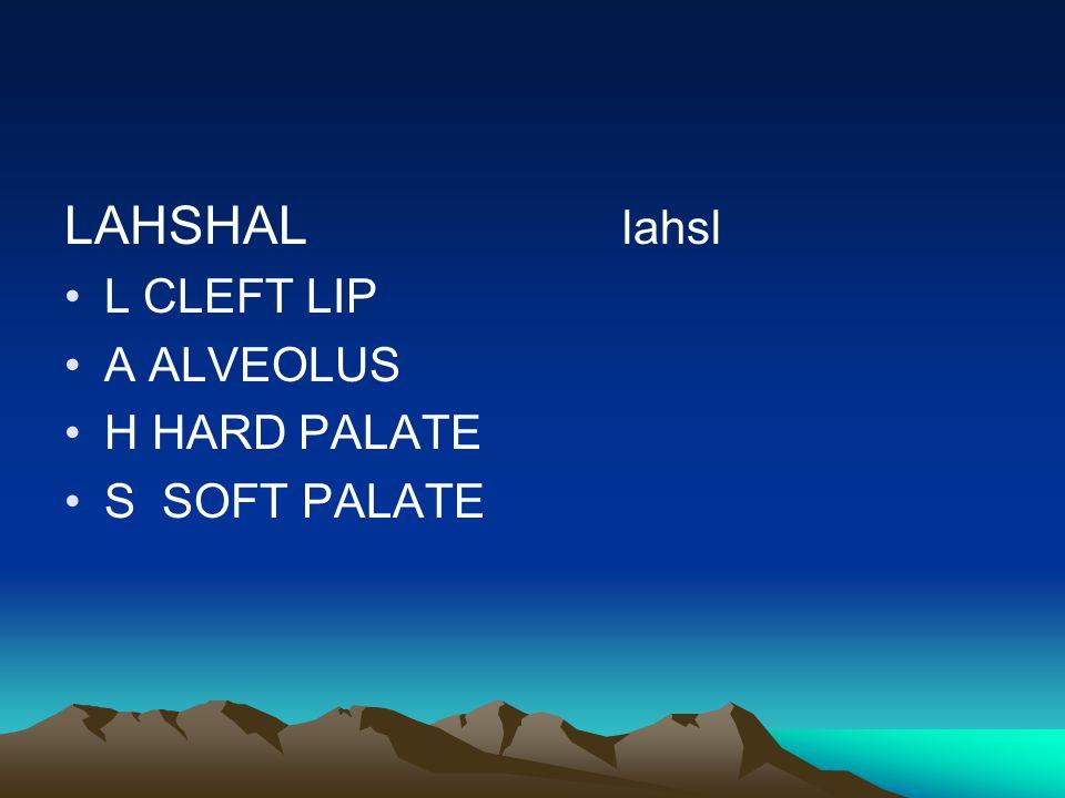 LAHSHAL lahsl L CLEFT LIP A ALVEOLUS H HARD PALATE S SOFT PALATE