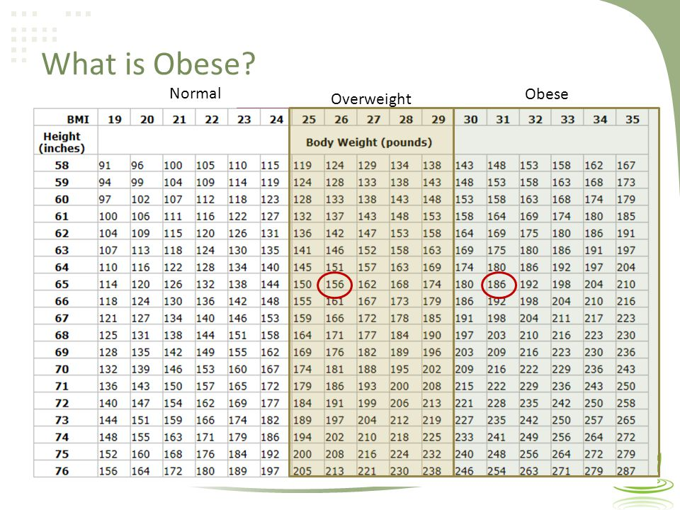 What is Obese Overweight Obese Normal