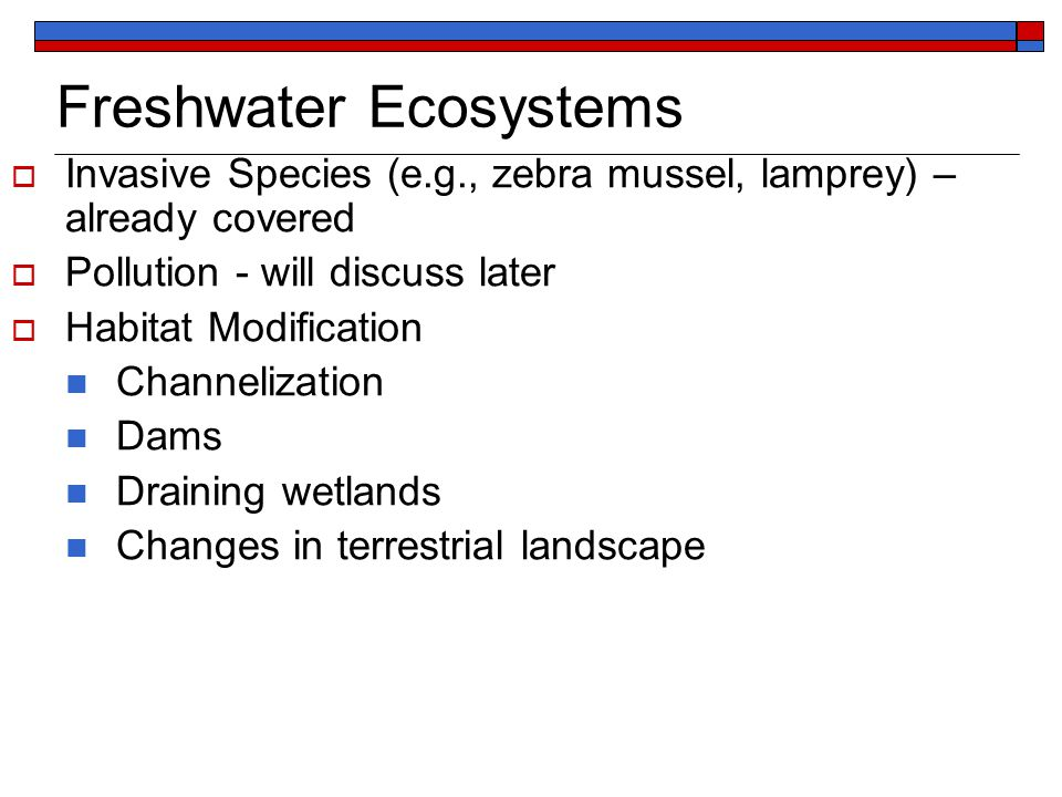 Freshwater Ecosystems  Invasive Species (e.g., zebra mussel, lamprey) – already covered  Pollution - will discuss later  Habitat Modification Channelization Dams Draining wetlands Changes in terrestrial landscape
