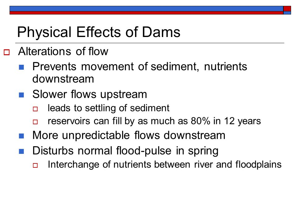 Physical Effects of Dams  Alterations of flow Prevents movement of sediment, nutrients downstream Slower flows upstream  leads to settling of sediment  reservoirs can fill by as much as 80% in 12 years More unpredictable flows downstream Disturbs normal flood-pulse in spring  Interchange of nutrients between river and floodplains