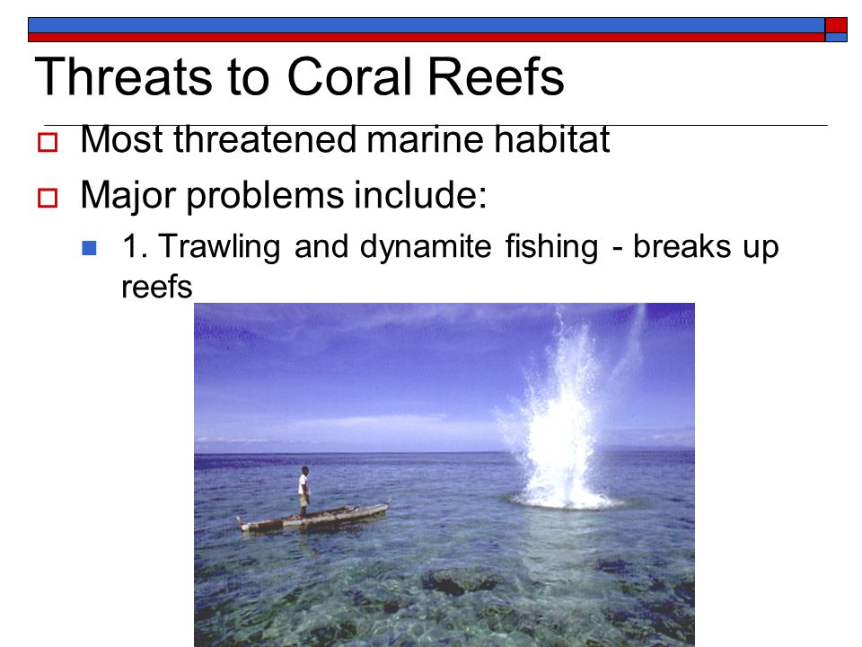 Threats to Coral Reefs  Most threatened marine habitat  Major problems include: 1.