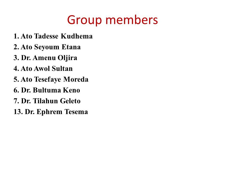 Group members 1.Ato Tadesse Kudhema 2. Ato Seyoum Etana 3.