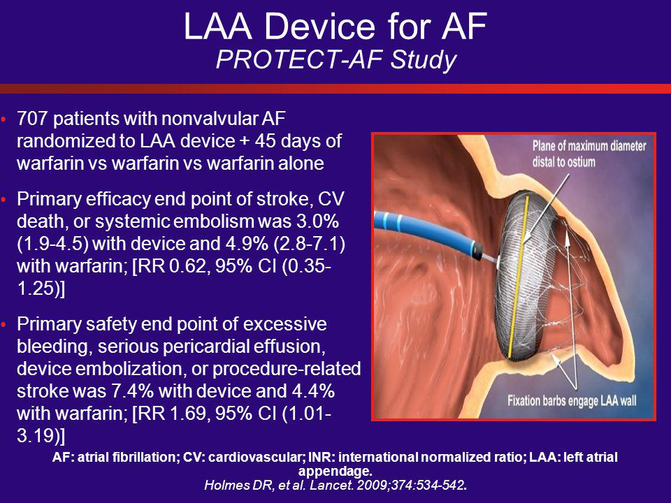 AF: atrial fibrillation; CV: cardiovascular; INR: international normalized ratio; LAA: left atrial appendage.