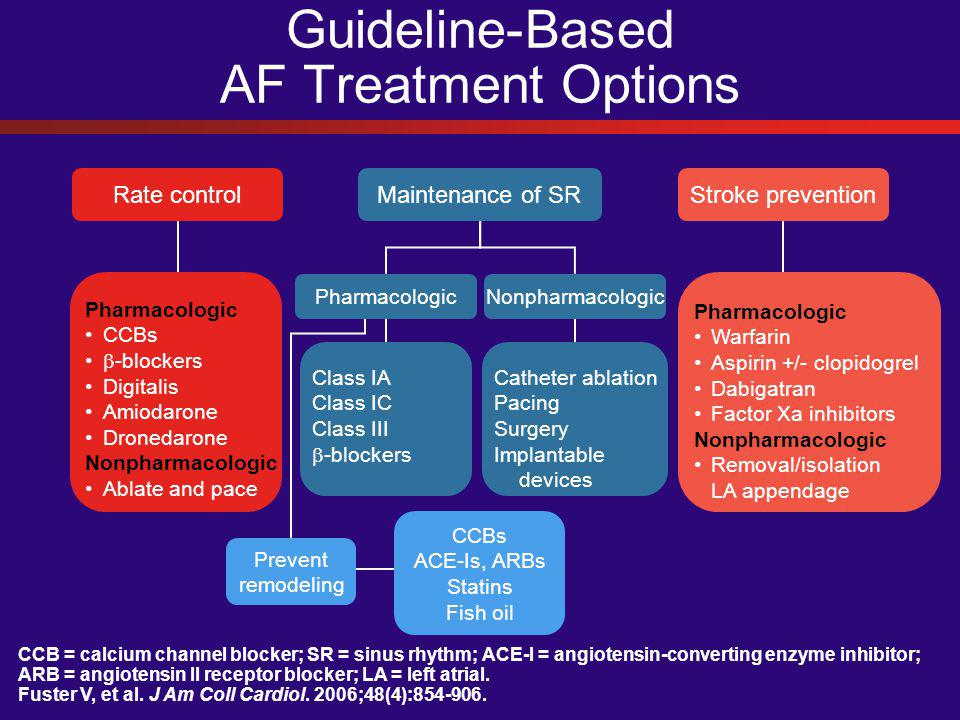 Guideline-Based AF Treatment Options CCB = calcium channel blocker; SR = sinus rhythm; ACE-I = angiotensin-converting enzyme inhibitor; ARB = angioten