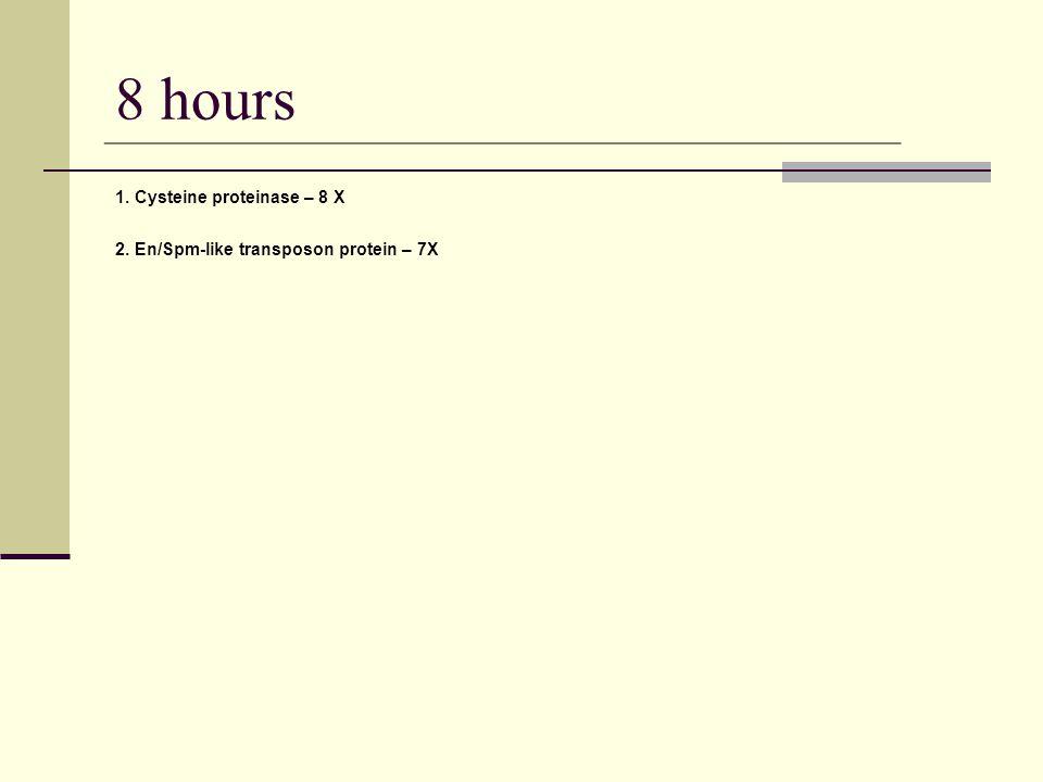 8 hours 1. Cysteine proteinase – 8 X 2. En/Spm-like transposon protein – 7X