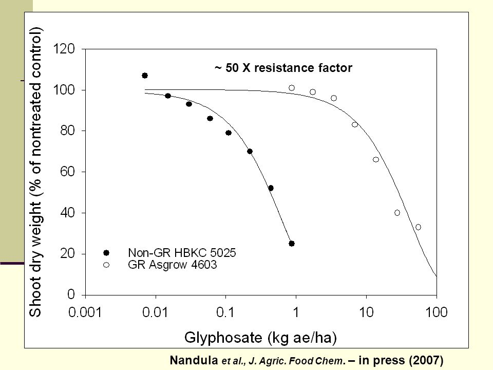 Increase in leaf area 25 days after application of glyphosate to Sorghum bicolor