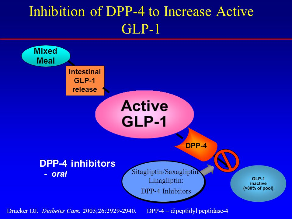 Intestinal GLP-1 release Mixed Meal Drucker DJ. Diabetes Care.