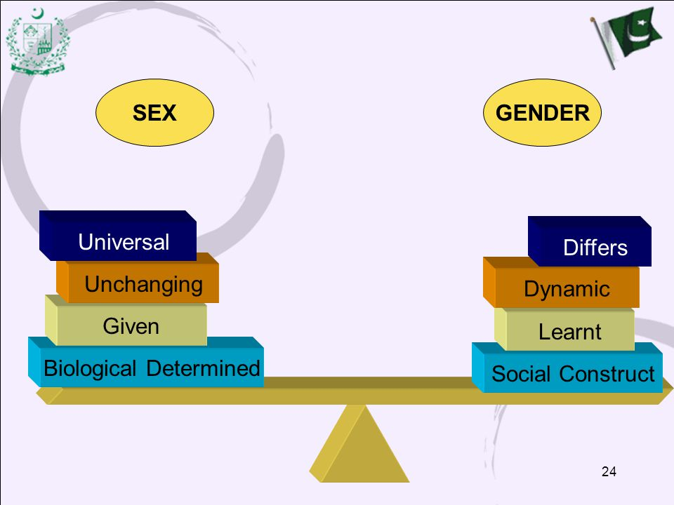 24 SEXGENDER Biological Determined Given Unchanging Universal Social Construct Learnt Dynamic Differs