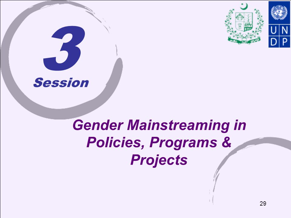 29 3 Gender Mainstreaming in Policies, Programs & Projects Session
