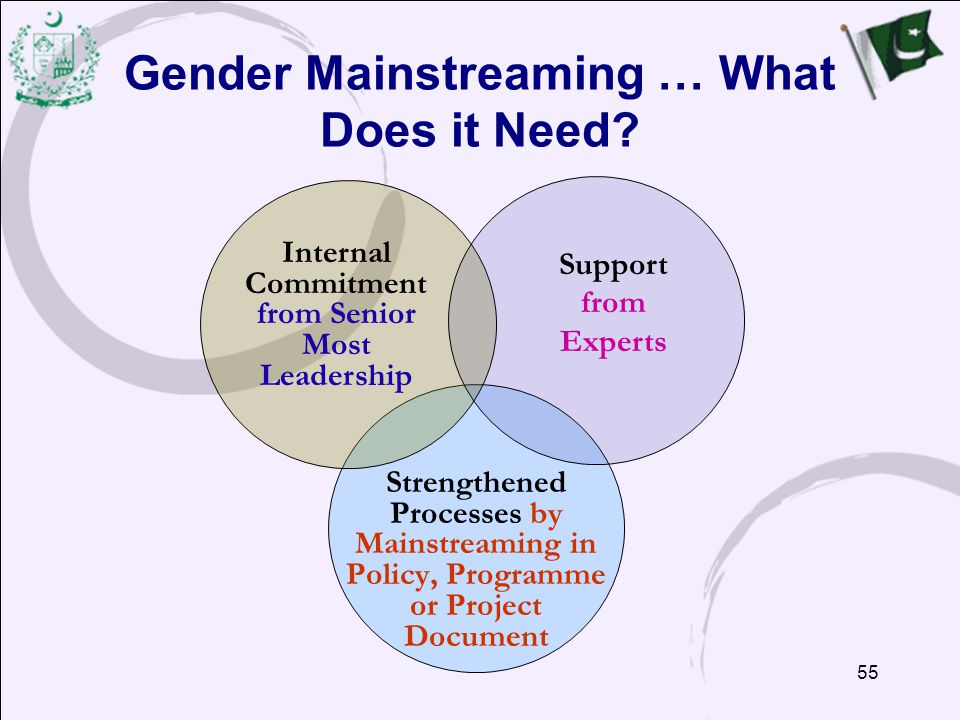55 Gender Mainstreaming … What Does it Need.