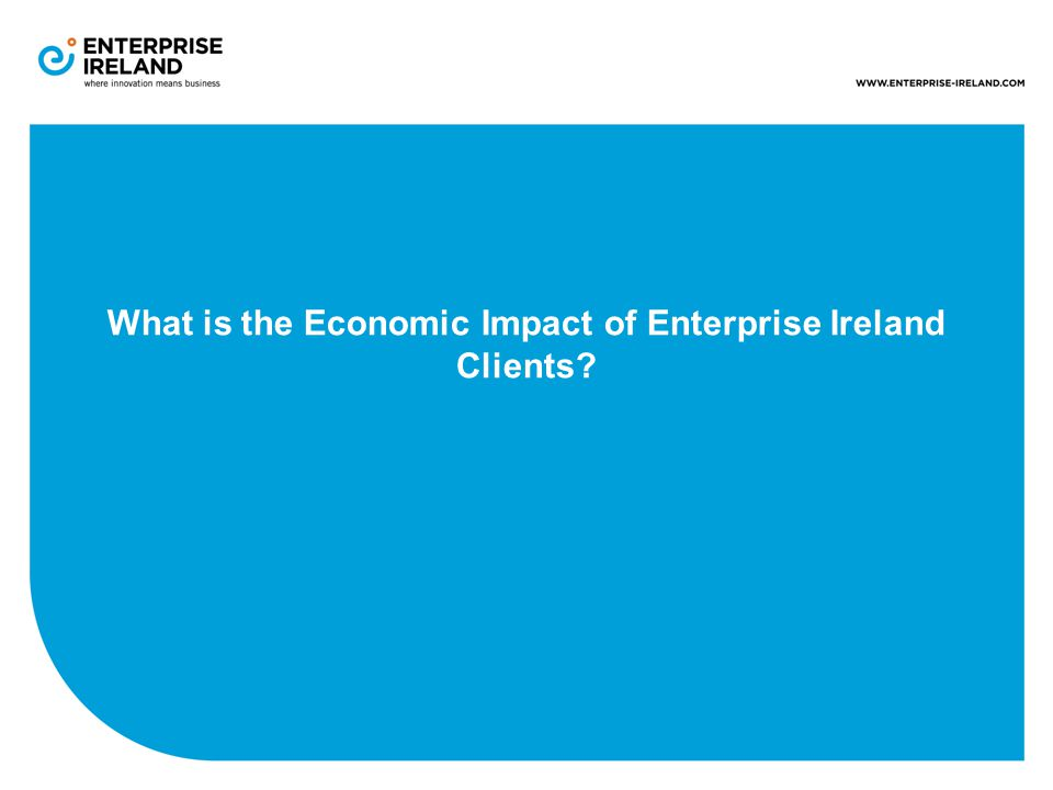 What is the Economic Impact of Enterprise Ireland Clients
