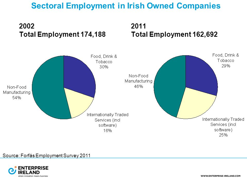 2002 2011 Total Employment 174,188 Total Employment 162,692 Sectoral Employment in Irish Owned Companies Source: Forfás Employment Survey 2011