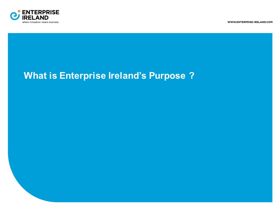 Key Considerations Enterprise Ireland Financial Service Support Company Projects: New Product, New markets, Productivity Improvement Company Strategy Return to Taxpayer, Economic Impact: Value for Money