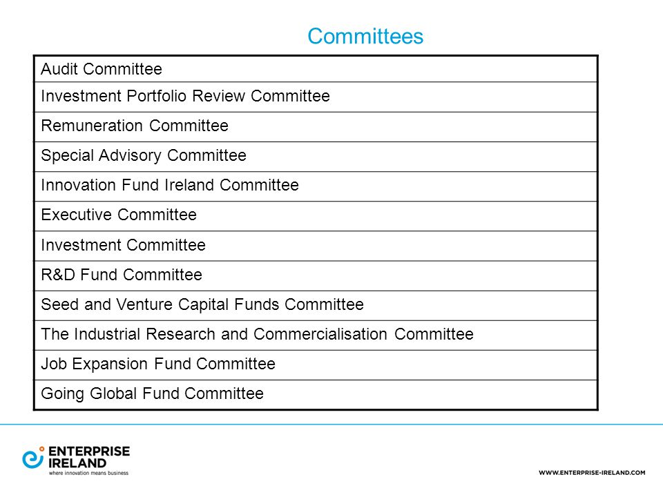 Audit Committee Investment Portfolio Review Committee Remuneration Committee Special Advisory Committee Innovation Fund Ireland Committee Executive Committee Investment Committee R&D Fund Committee Seed and Venture Capital Funds Committee The Industrial Research and Commercialisation Committee Job Expansion Fund Committee Going Global Fund Committee Committees