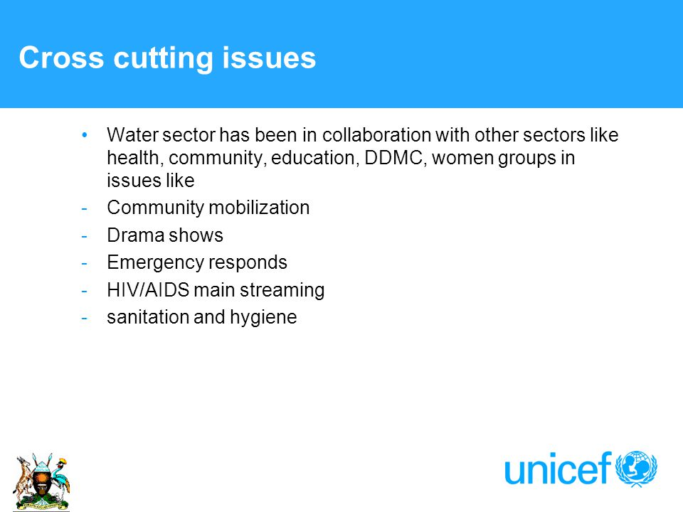 Cross cutting issues Water sector has been in collaboration with other sectors like health, community, education, DDMC, women groups in issues like -Community mobilization -Drama shows -Emergency responds -HIV/AIDS main streaming -sanitation and hygiene