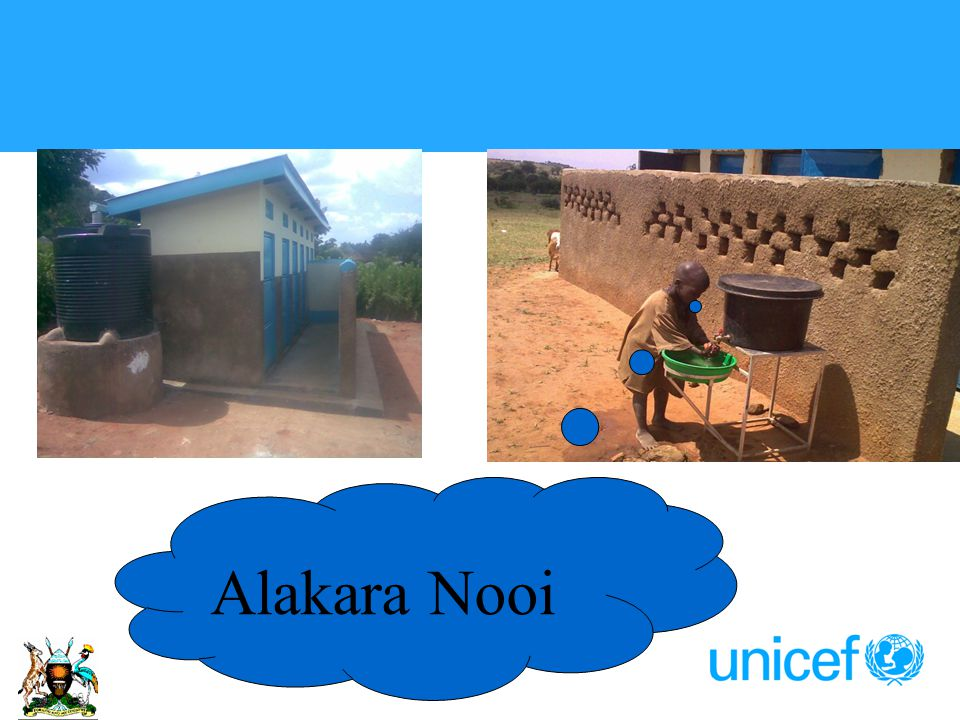 Alakara Nooi
