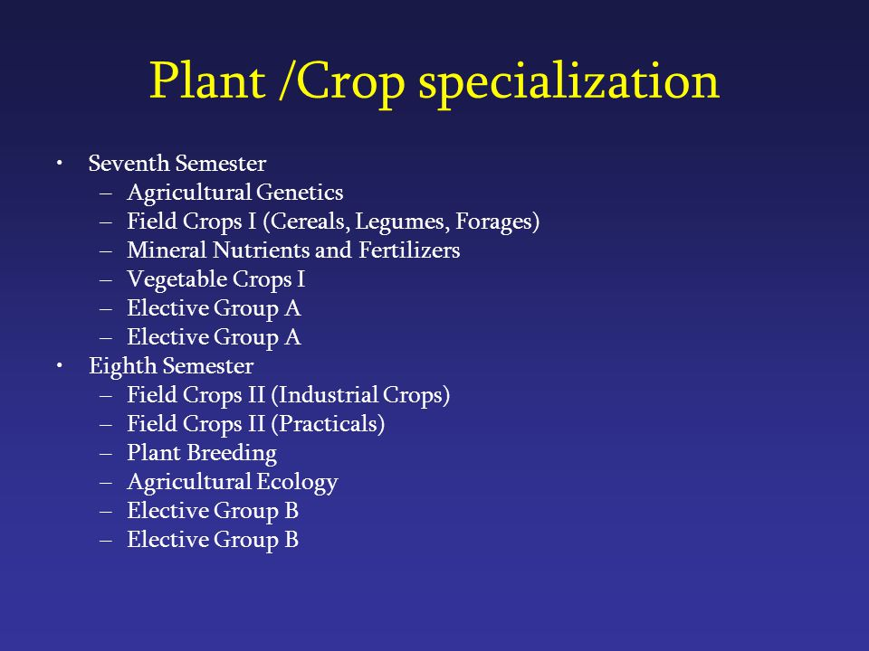 Plant /Crop specialization Seventh Semester –Agricultural Genetics –Field Crops I (Cereals, Legumes, Forages) –Mineral Nutrients and Fertilizers –Vegetable Crops Ι –Elective Group A Eighth Semester –Field Crops II (Industrial Crops) –Field Crops II (Practicals) –Plant Breeding –Agricultural Ecology –Elective Group B