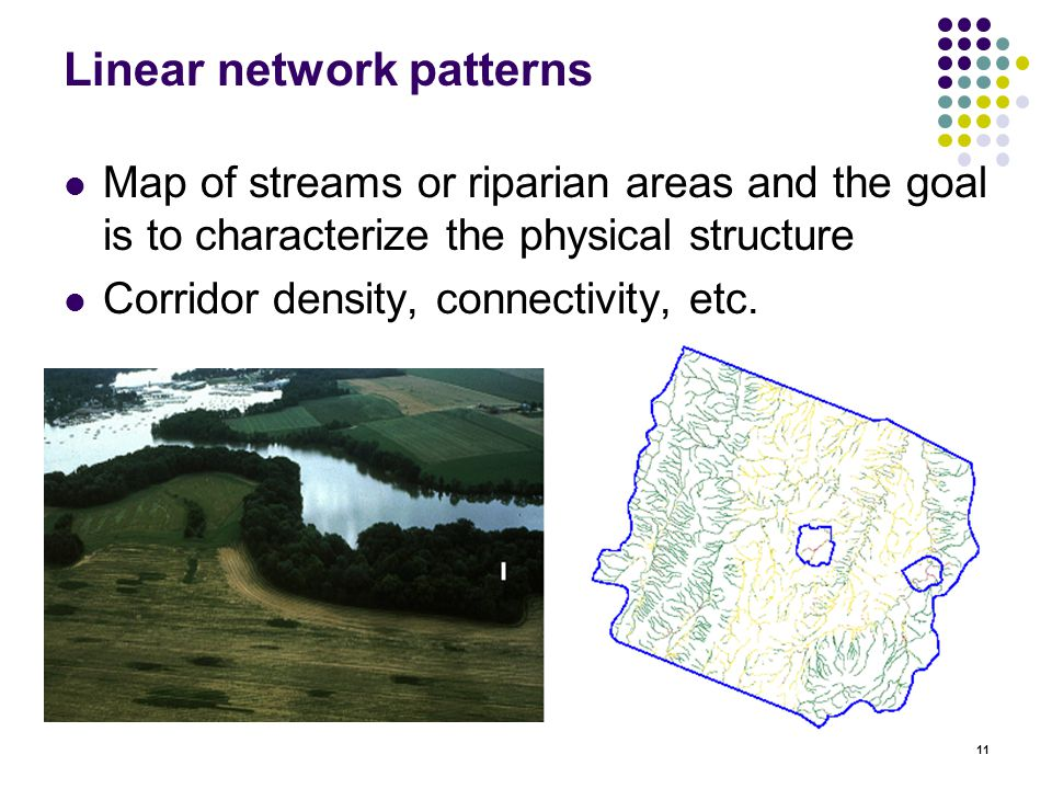 11 Linear network patterns Map of streams or riparian areas and the goal is to characterize the physical structure Corridor density, connectivity, etc.