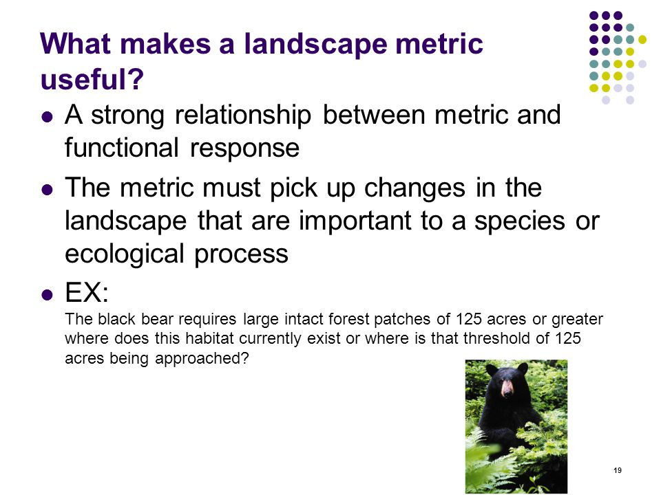 19 What makes a landscape metric useful.