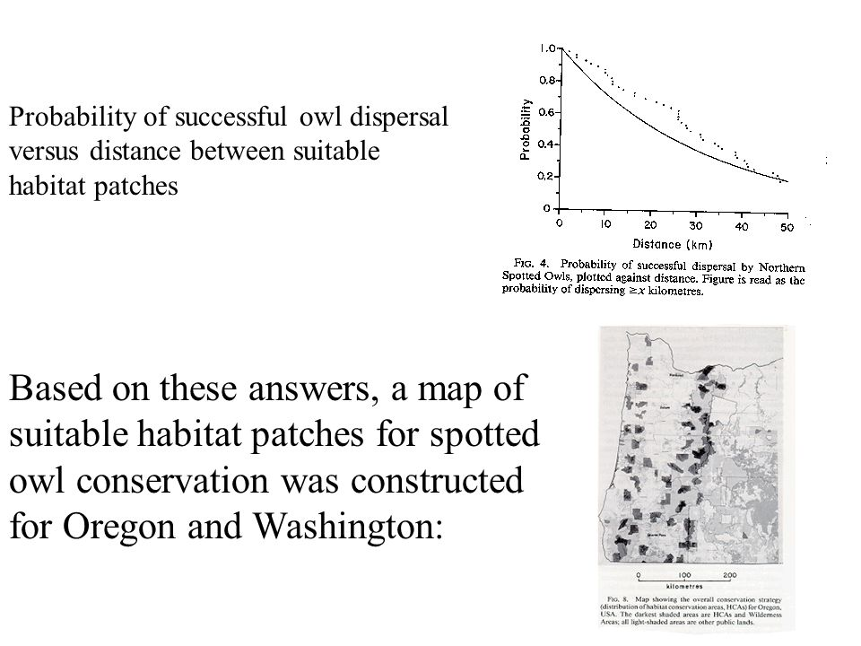 Probability of successful owl dispersal versus distance between suitable habitat patches Based on these answers, a map of suitable habitat patches for spotted owl conservation was constructed for Oregon and Washington: