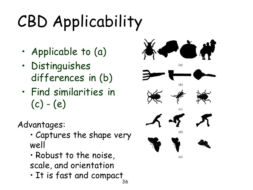 36 CBD Applicability Applicable to (a) Distinguishes differences in (b) Find similarities in (c) - (e) Advantages: Captures the shape very well Robust