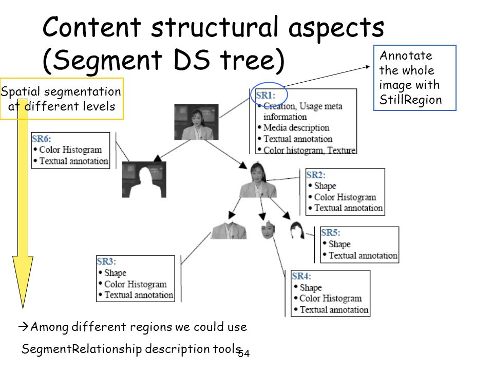 54 Content structural aspects (Segment DS tree) Annotate the whole image with StillRegion Spatial segmentation at different levels  Among different r