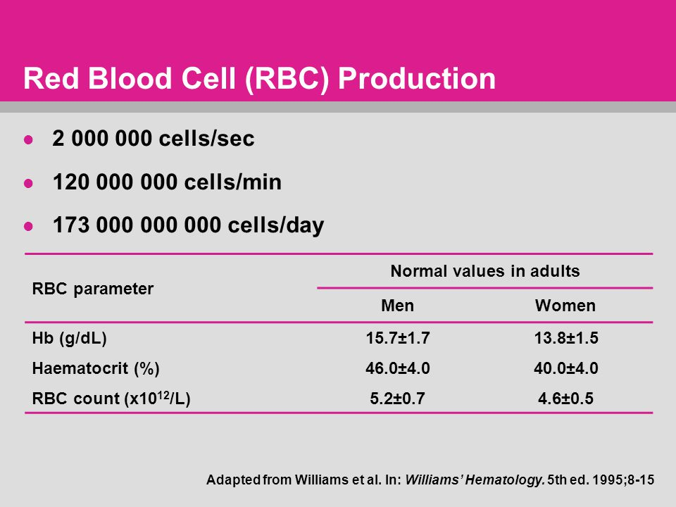 Red Blood Cell (RBC) Production 2 000 000 cells/sec 120 000 000 cells/min 173 000 000 000 cells/day RBC parameter Normal values in adults MenWomen Hb (g/dL)15.7±1.713.8±1.5 Haematocrit (%)46.0±4.040.0±4.0 RBC count (x10 12 /L)5.2±0.74.6±0.5 Adapted from Williams et al.