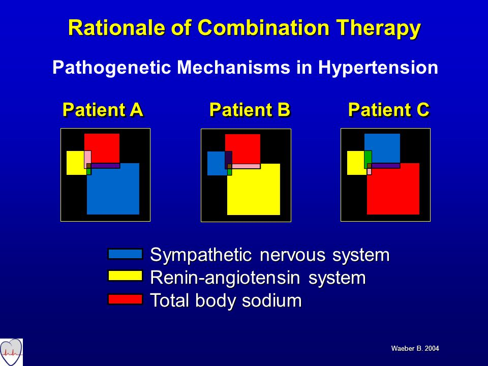 Sympathetic nervous system Renin-angiotensin system Total body sodium Sympathetic nervous system Renin-angiotensin system Total body sodium Patient A Patient B Patient C Rationale of Combination Therapy Waeber B.