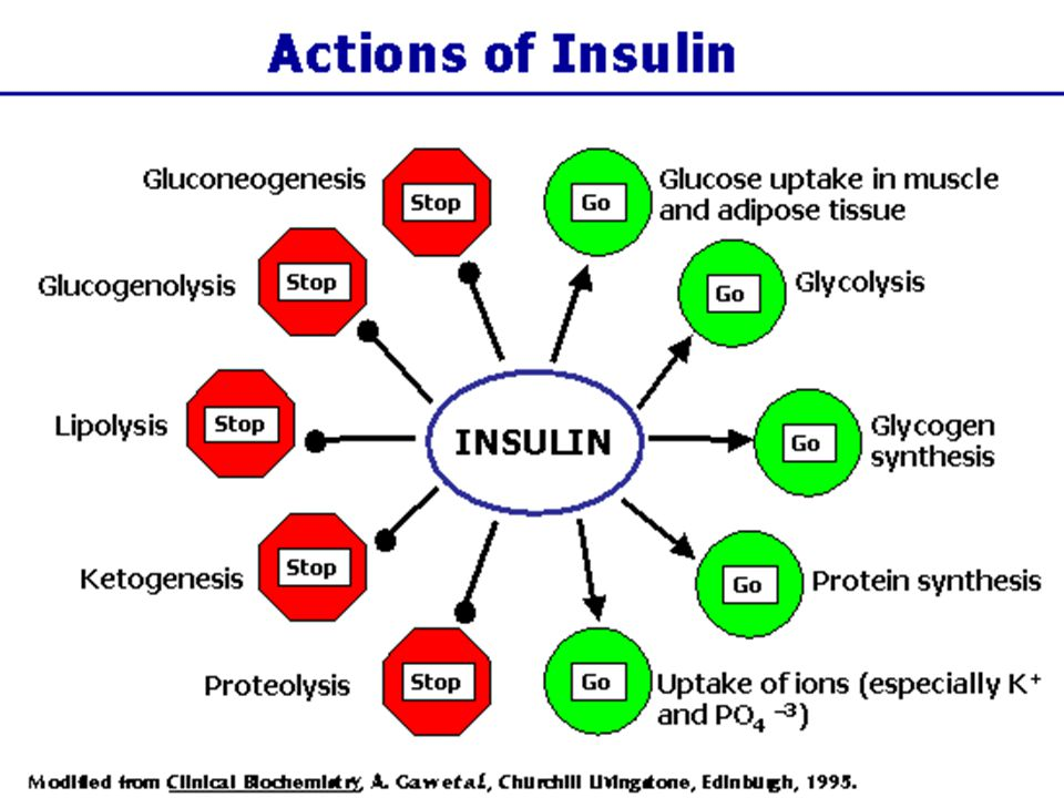 Nutritional ketosis: role of CHO & insulin Dietary CHO primary insulin secretagogue Insulin inhibits adipocyte lipolysis CHO restriction lowers endogenous insulin production, allowing lipolysis Metabolism directed from fat storage to fat mobilization & oxidation