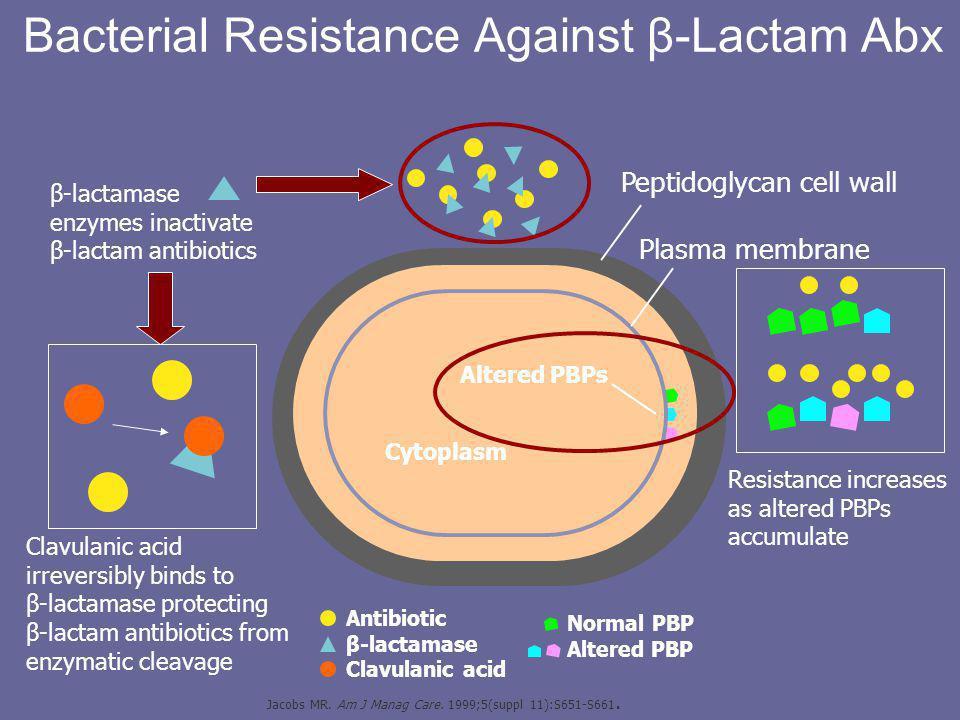 β-lactamase enzymes inactivate β-lactam antibiotics Bacterial Resistance Against β-Lactam Abx Cytoplasm Altered PBPs Peptidoglycan cell wall Plasma membrane Clavulanic acid irreversibly binds to β-lactamase protecting β-lactam antibiotics from enzymatic cleavage Antibiotic β-lactamase Clavulanic acid Normal PBP Altered PBP Resistance increases as altered PBPs accumulate Jacobs MR.