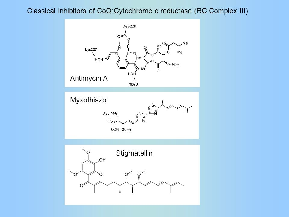 Antimycin A Myxothiazol Stigmatellin Classical inhibitors of CoQ:Cytochrome c reductase (RC Complex III)
