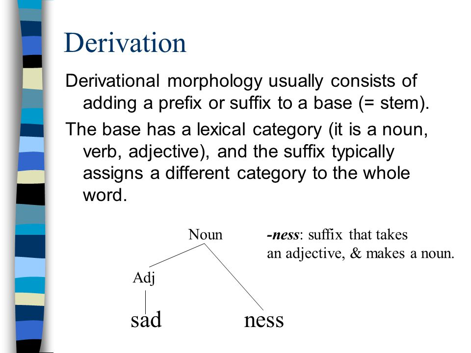 Derivation Derivational morphology usually consists of adding a prefix or suffix to a base (= stem).