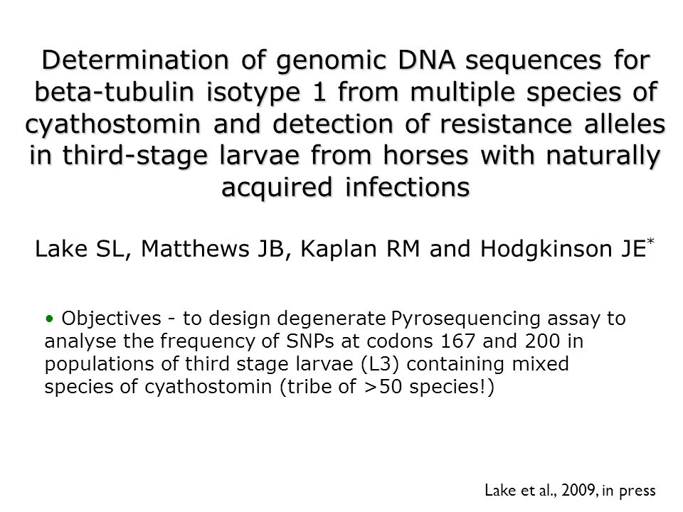 Determination of genomic DNA sequences for beta-tubulin isotype 1 from multiple species of cyathostomin and detection of resistance alleles in third-stage larvae from horses with naturally acquired infections Determination of genomic DNA sequences for beta-tubulin isotype 1 from multiple species of cyathostomin and detection of resistance alleles in third-stage larvae from horses with naturally acquired infections Lake SL, Matthews JB, Kaplan RM and Hodgkinson JE * Lake et al., 2009, in press Objectives - to design degenerate Pyrosequencing assay to analyse the frequency of SNPs at codons 167 and 200 in populations of third stage larvae (L3) containing mixed species of cyathostomin (tribe of >50 species!)