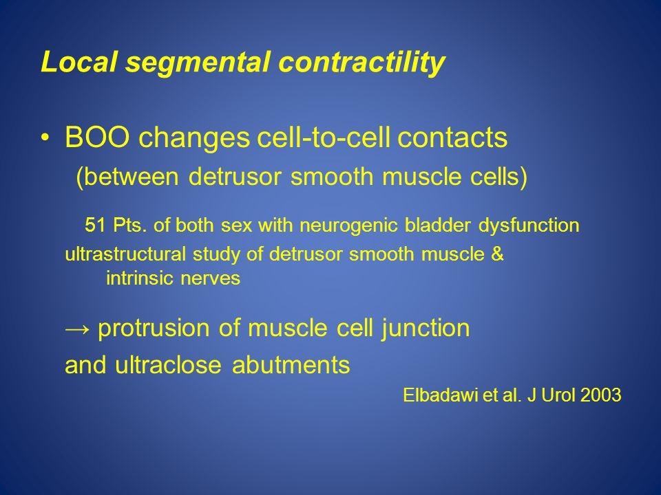 Local segmental contractility BOO changes cell-to-cell contacts (between detrusor smooth muscle cells) 51 Pts.