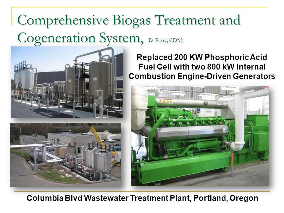 Comprehensive Biogas Treatment and Cogeneration System, ( D.