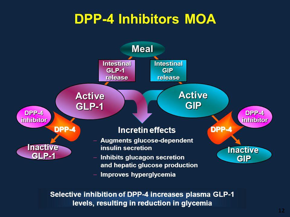 DPP-4 Inhibitors MOA 12 Incretin effects –Augments glucose-dependent insulin secretion –Inhibits glucagon secretion and hepatic glucose production –Im