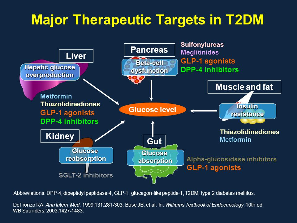 Major Therapeutic Targets in T2DM DeFronzo RA. Ann Intern Med. 1999;131:281-303. Buse JB, et al. In: Williams Textbook of Endocrinology. 10th ed. WB S