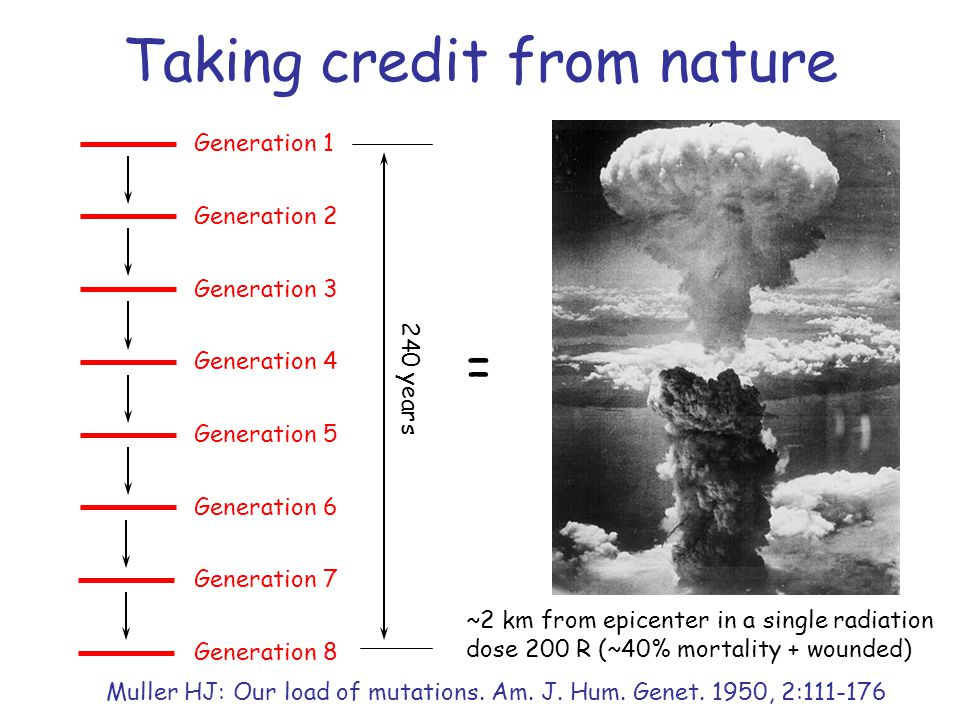 Taking credit from nature Generation 1 Generation 2 Generation 3 Generation 4 Generation 5 Generation 6 Generation 7 Generation 8 240 years ~2 km from epicenter in a single radiation dose 200 R (~40% mortality + wounded) = Muller HJ: Our load of mutations.