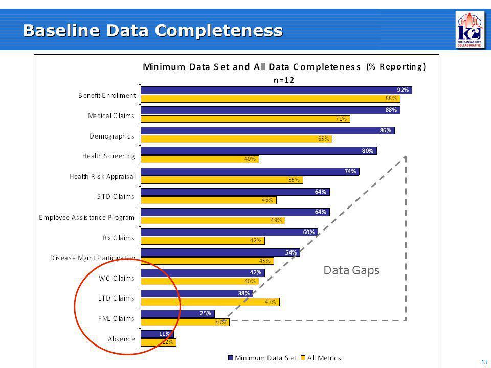 13 Baseline Data Completeness Data Gaps