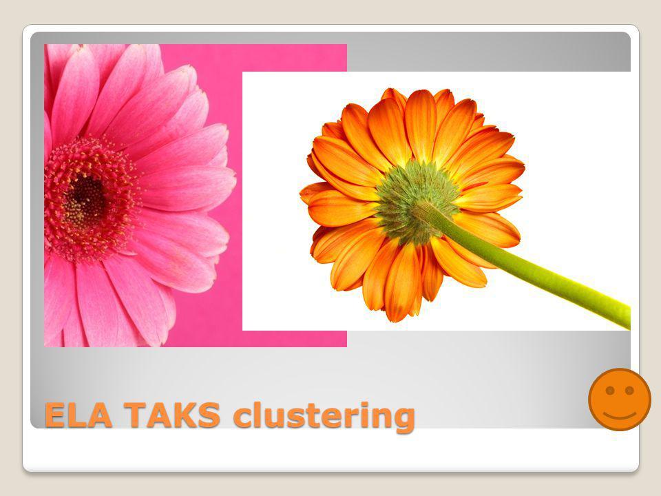 ELA TAKS clustering