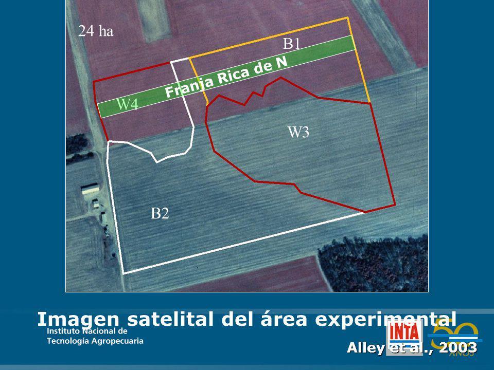 W4 B1 W3 B2 24 ha Imagen satelital del área experimental Alley et al., 2003 Franja Rica de N
