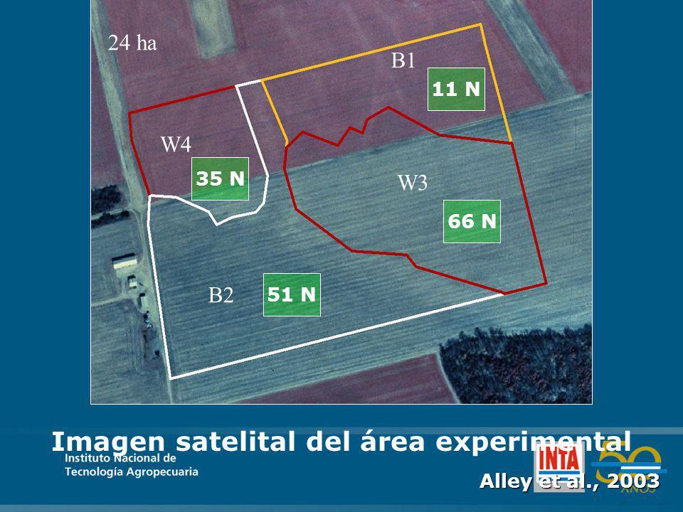 W4 B1 W3 B2 24 ha Imagen satelital del área experimental Alley et al., 2003 35 N 51 N 11 N 66 N