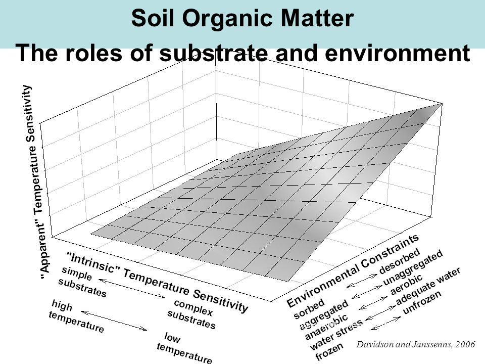 Davidson and Janssens. 2006. Nature 440:165-173 Davidson and Janssenns, 2006 and Janssens. 2006. Nature 440:165-173 Soil Organic Matter The roles of s