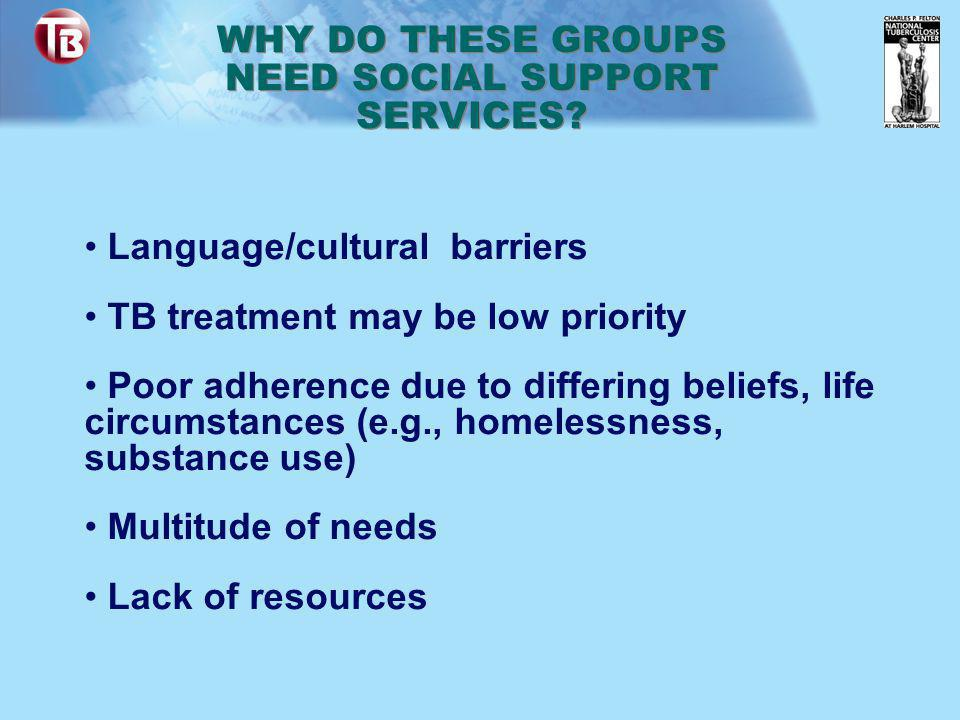 Language/cultural barriers TB treatment may be low priority Poor adherence due to differing beliefs, life circumstances (e.g., homelessness, substance