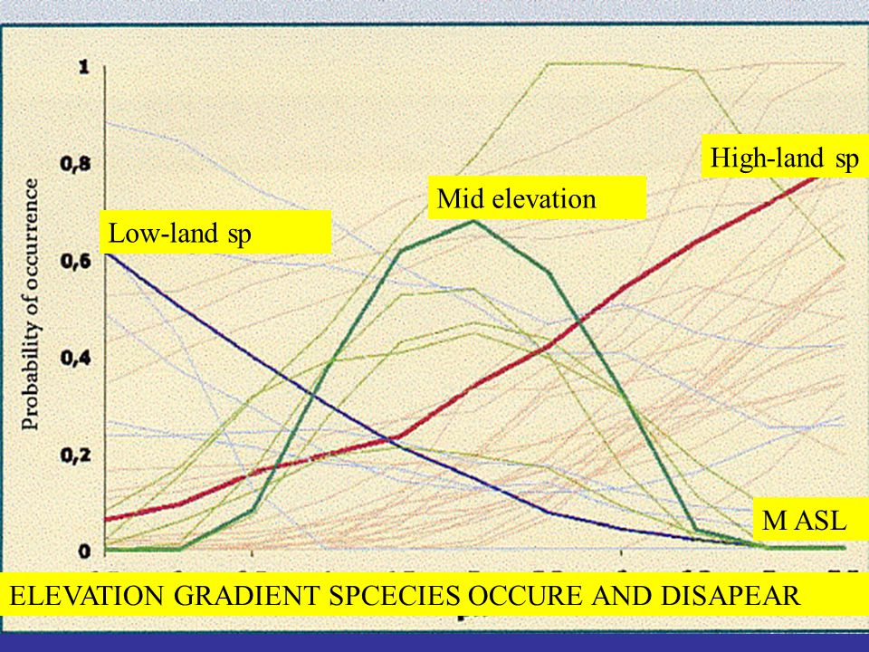 ELEVATION GRADIENT SPCECIES OCCURE AND DISAPEAR Low-land sp Mid elevation High-land sp M ASL